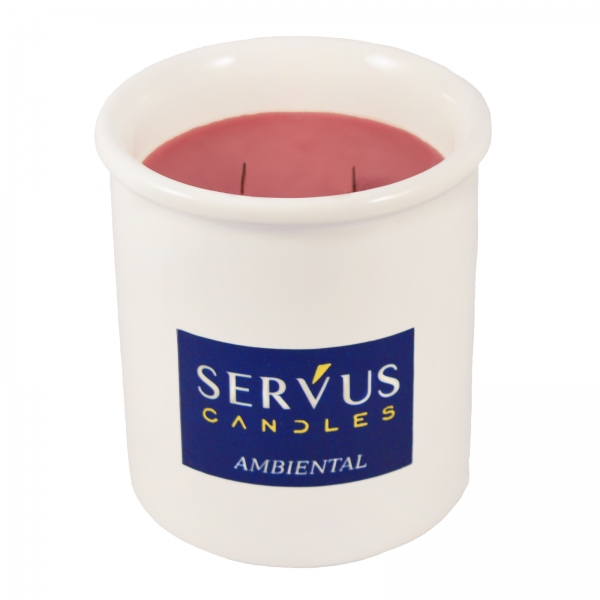 Set 4 Lumanari Parfumate Ambiental cu 2 fitiluri din lemn 1