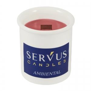 Bax 12 Lumanari Parfumate Ambiental, cu fitil din lemn2
