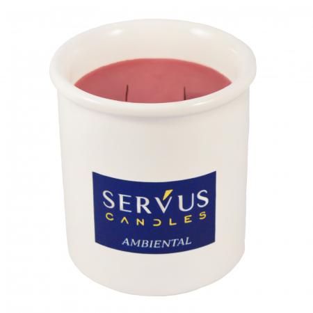 48 Lumanari Parfumate Ambiental cu 2 fitiluri din lemn2