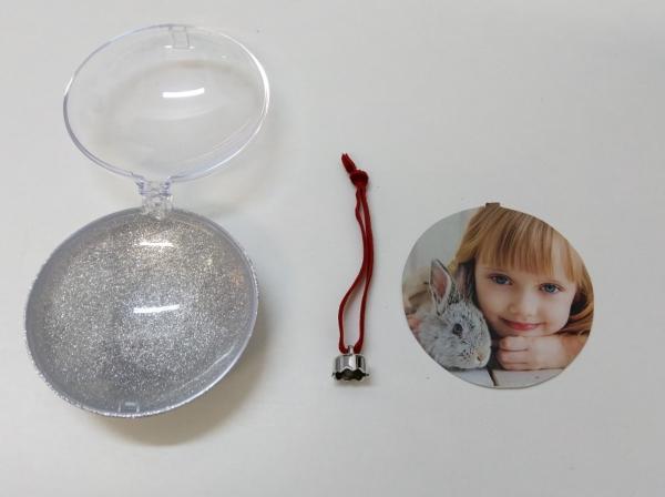 Glob in forma de Disc Cu Poza Pentru Brad - Glitter  Argintiu 10cm [4]