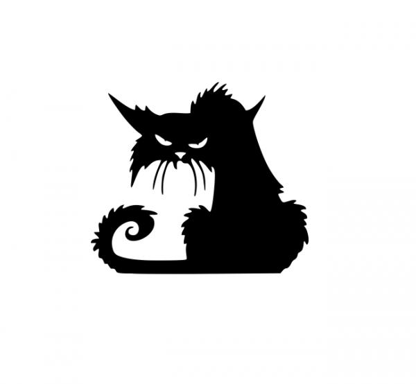 Sticker Auto - Pisica 0