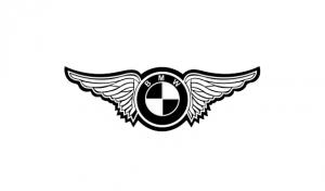 Sticker Auto - BMW Wings1