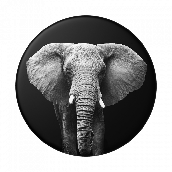 Suport stand adeziv universal Popsockets Popgrip Loxodonta Africana 0