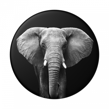 Suport stand adeziv universal Popsockets Popgrip Loxodonta Africana0