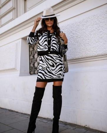 Compleu Zebra0