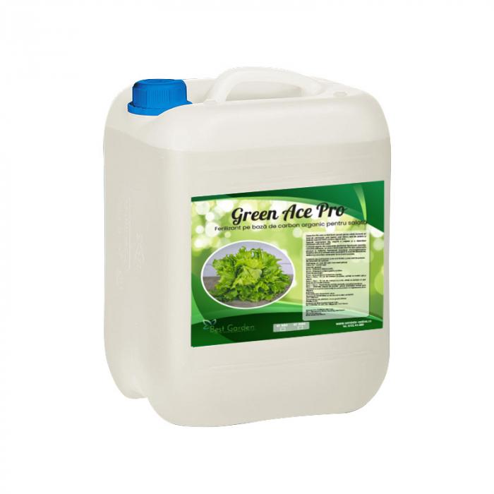 Ingrasamant bio Green Ace Pro 10 L [0]
