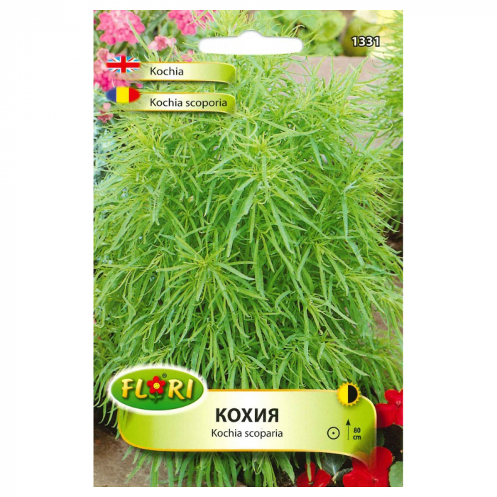 Seminte de kochia Scoporia, 1,5 g [0]