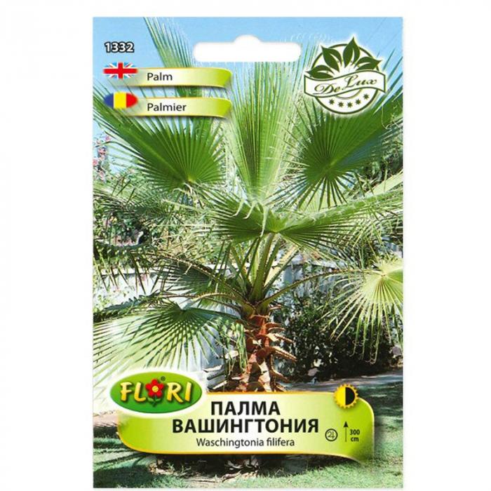 Seminte de arbust, Florian, palmier Washington, 1 g 0