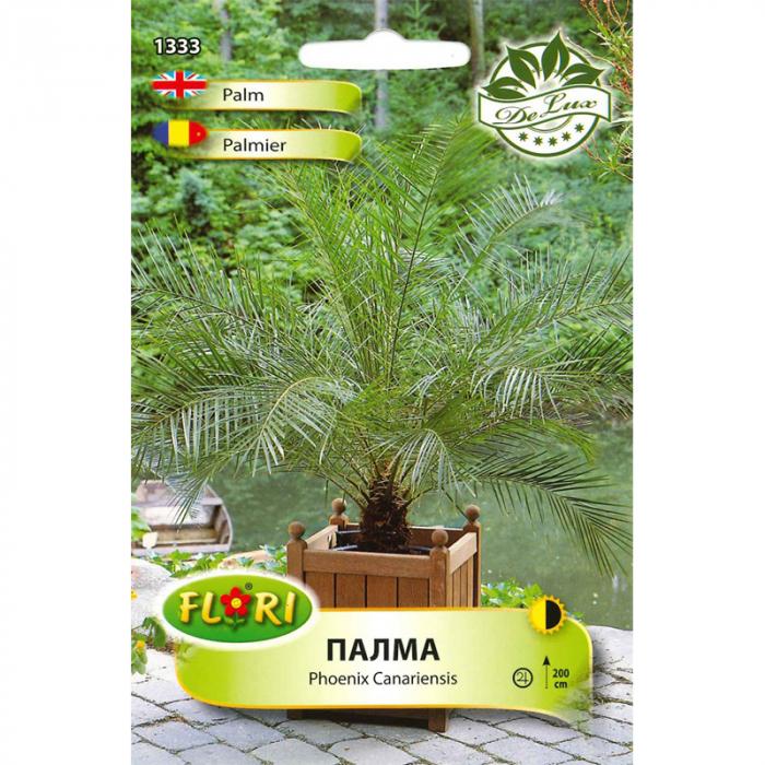 Seminte de arbust, Florian, palmier Phoenix Canariensis, 5 g [0]