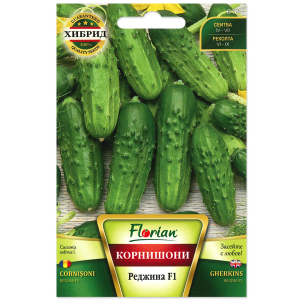 Seminte de castraveti cornichon Regina F1, Florian, 1 gram 0