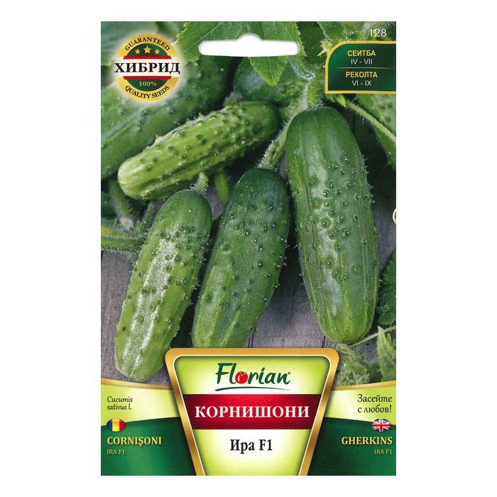 Seminte de castraveti, Florian, Soi cornison ira f1, hibrid timpuriu, 100 g 1