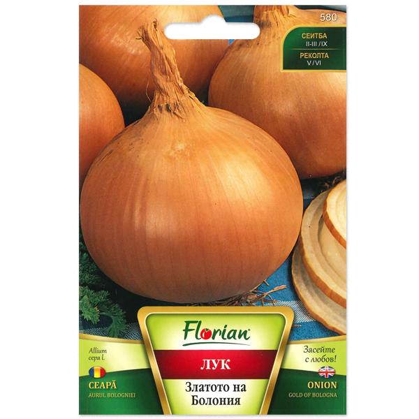 Seminte de ceapa aurul Boloniei, Florian, 2 grame 0