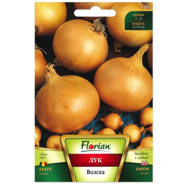 Seminte de ceapa Volska, Florian, 5 grame 0