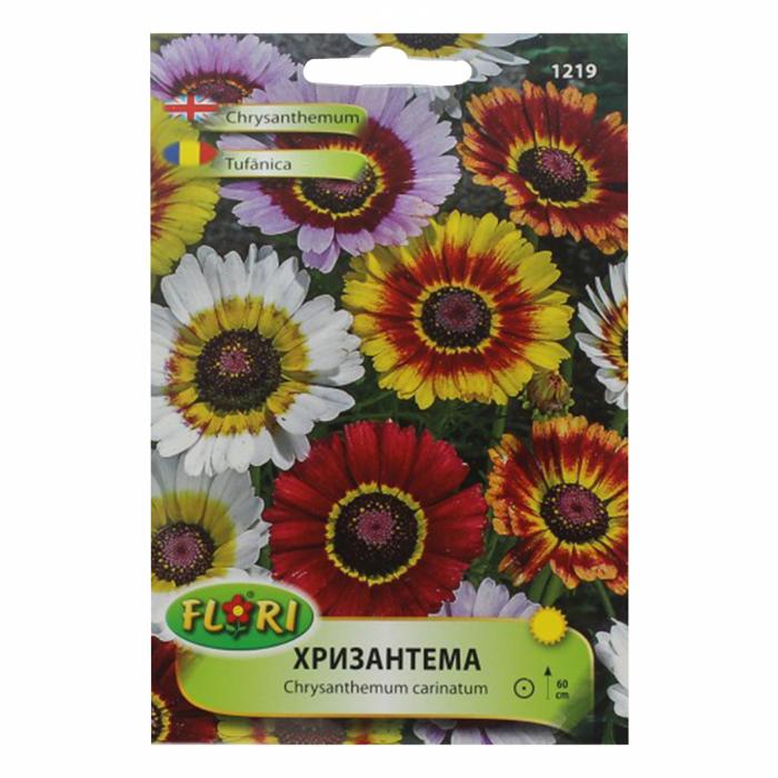 Seminte de crizantema(tufanica) mix,0.6 grame 0