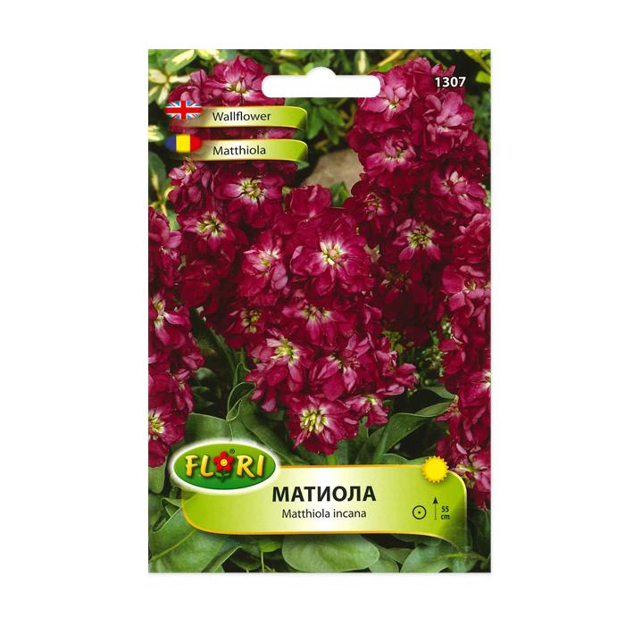 Seminte de flori, Florian, Matthiola incana, Florian 1