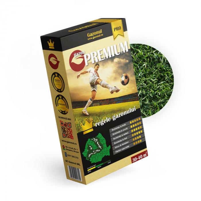 Seminte de Gazon Premium 1