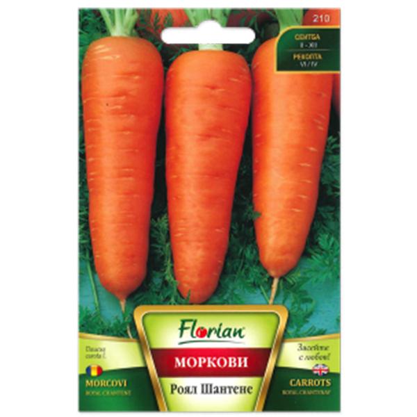 Seminte de morcovi Chantene Royal, Florian, 10 grame 0