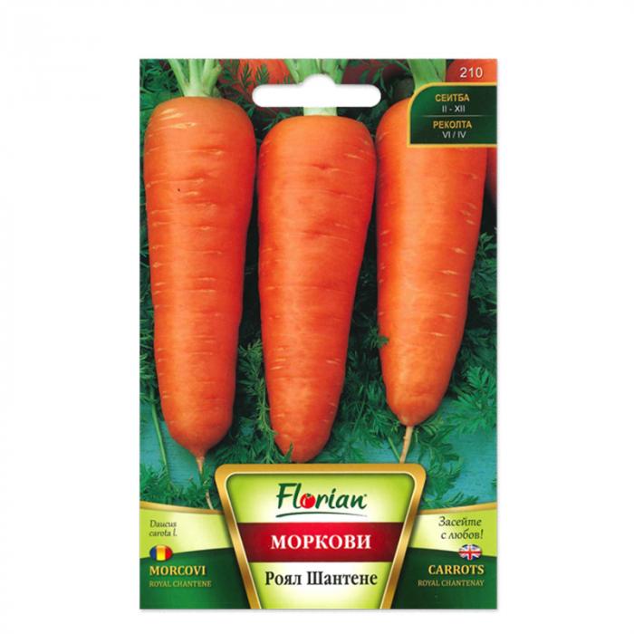 Seminte de morcovi Chantene Royal, Florian, 5 grame 0