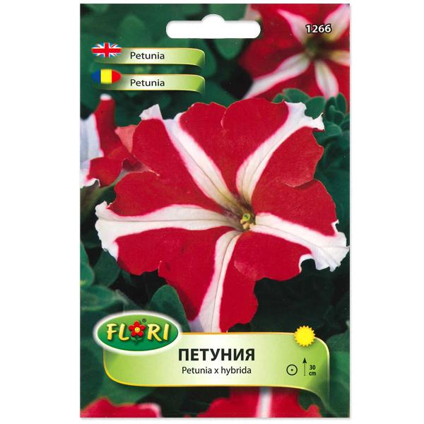 Seminte de petunia stelata rosie, Florian 0