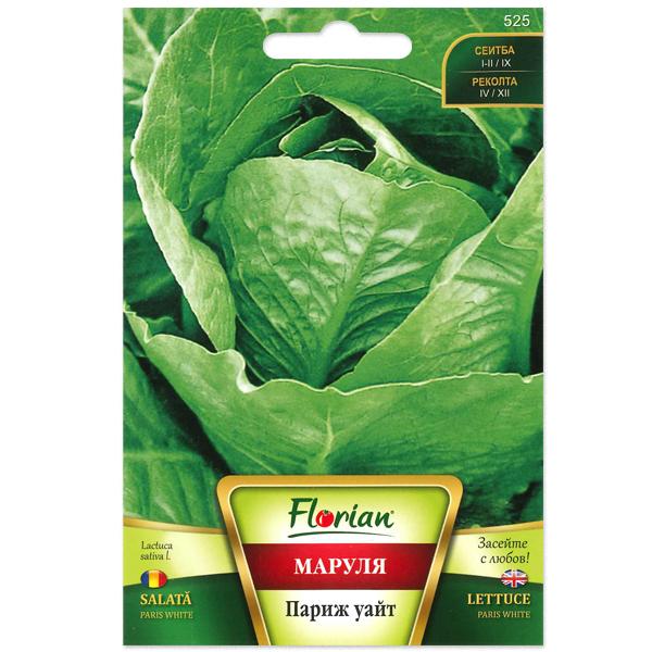 Seminte de salata Paris White, Florian, 3 grame 0