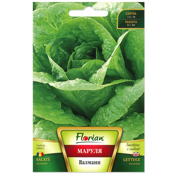 Seminte de salata Valmaine, Florian, 3 grame 0