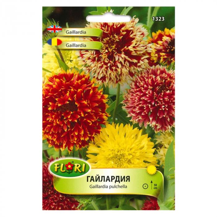 Seminte de Gaillardia Pulchella 0.5 grame [0]