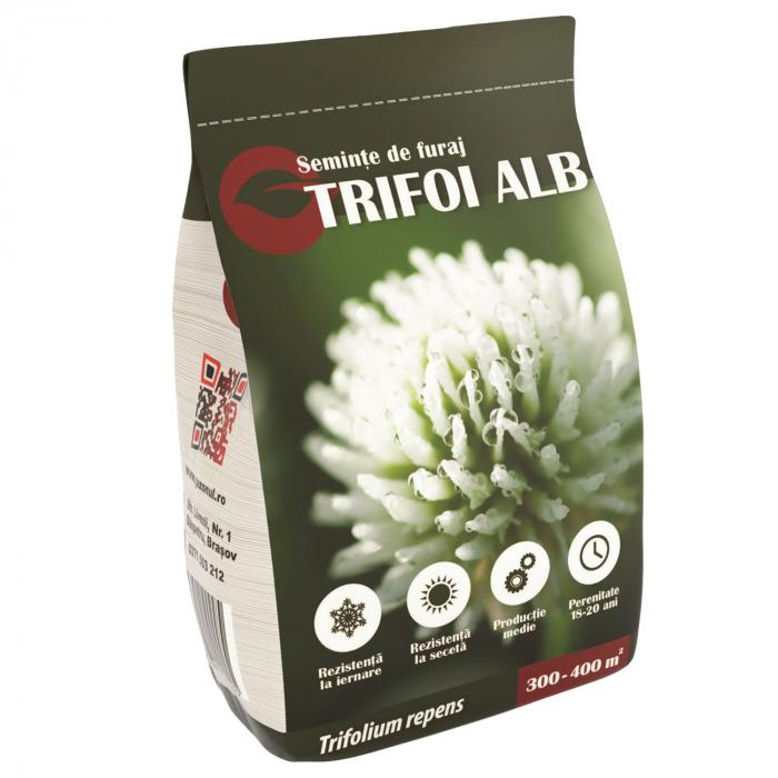 Seminte de trifoi alb, 500g 0