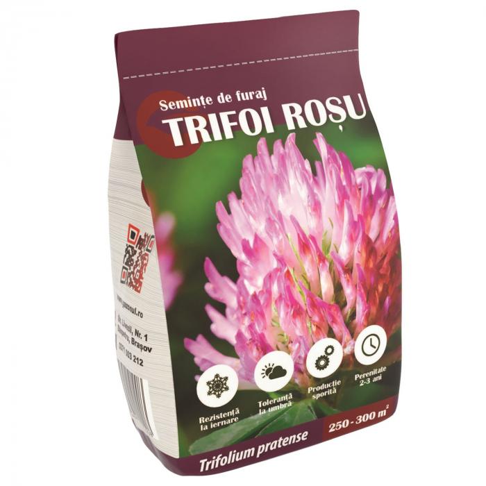 Seminte de trifoi rosu, 500g 0