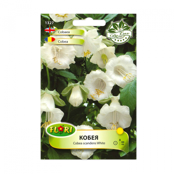 Seminte flori, Florian, Cobea alba, 1 g 0