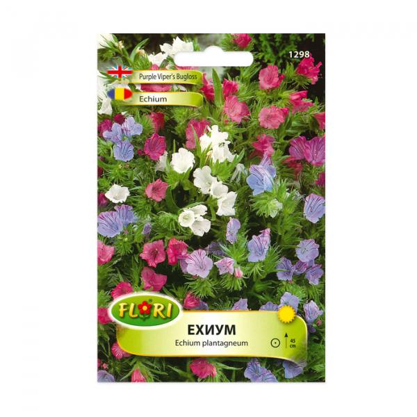 Seminte flori, Florian, Echium, 0.5 g 0