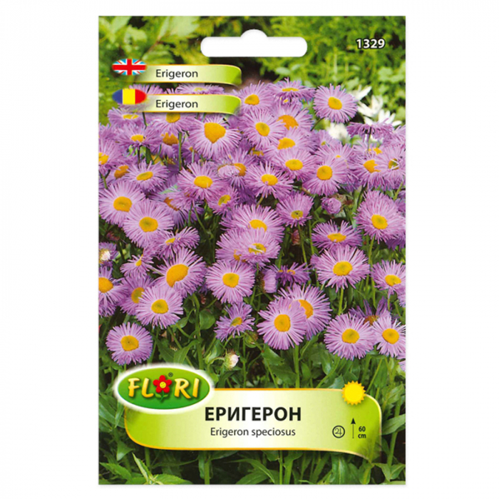 Seminte flori, Florian, Erigeron - Batranis, 0,5 g 0