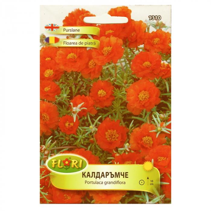 Seminte flori, Florian, Floare de piatra orange, 0.5 g 0