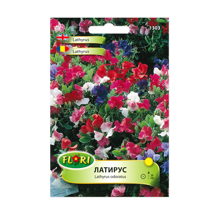 Seminte flori, Florian, Lathyrus odoratus-Mazariche, multicolor, 1 g 1