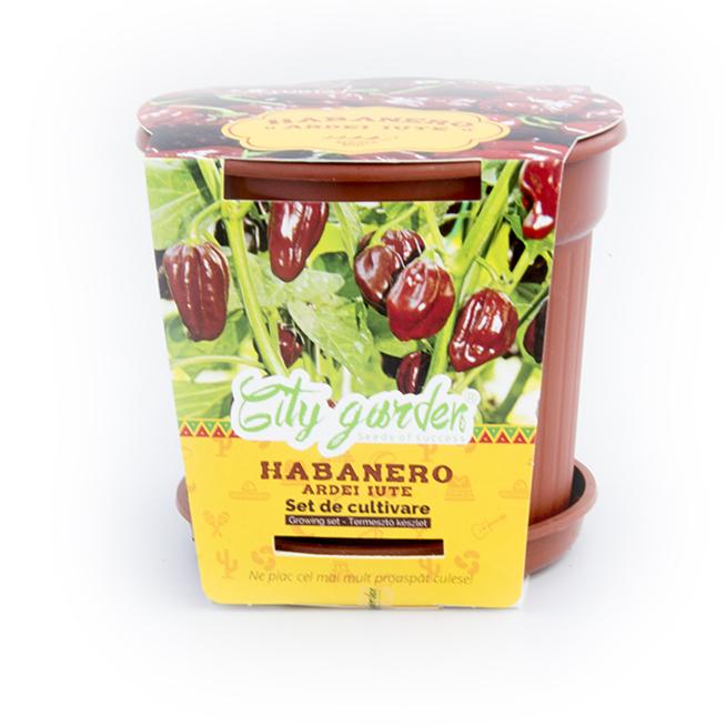 Set de cultivare Ardei iute Mexican Habanero Chocolate 1