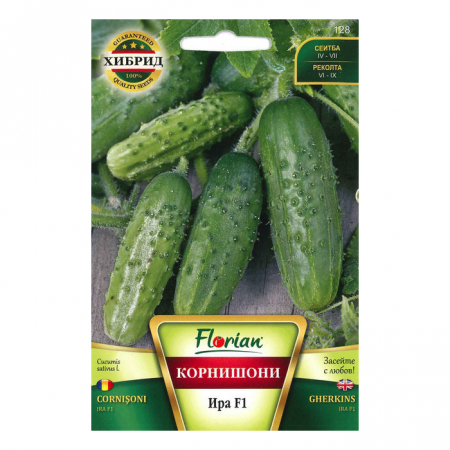 Seminte de castraveti, Florian, Soi cornison ira f1, hibrid timpuriu, 100 g1