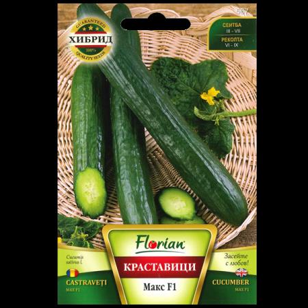 Seminte de castraveti Max F1, Florian, 1 gram [2]