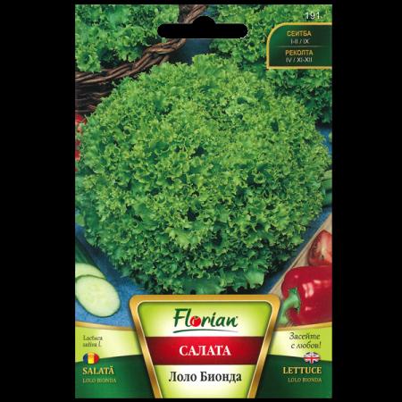 Seminte de salata Gentelina, Florian, 3 grame [1]