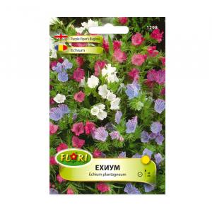 Seminte flori, Florian, Echium, 0.5 g0