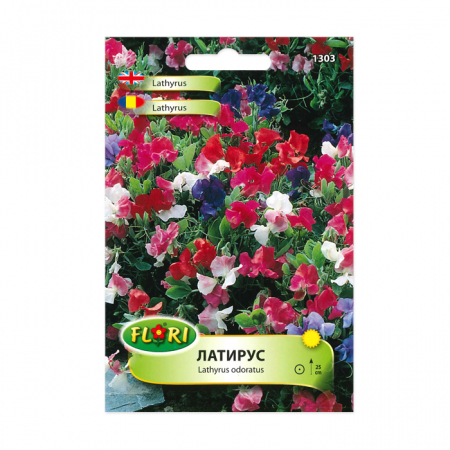 Seminte flori, Florian, Lathyrus odoratus-Mazariche, multicolor, 1 g1