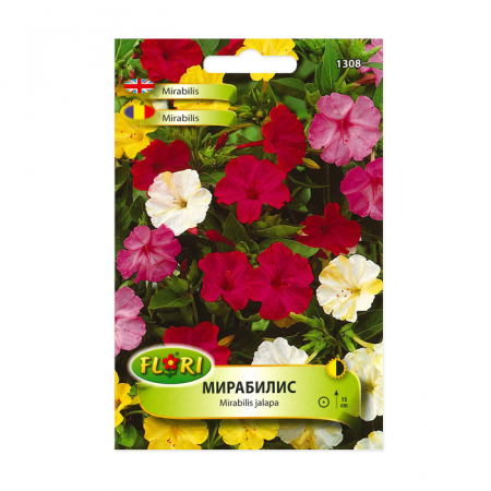 Seminte flori, Florian, Mirabilis-Frumoasa noptii, multicolor, 2.5 g1