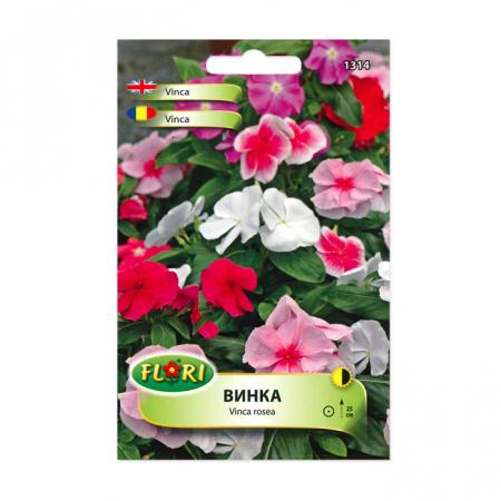 Seminte flori, Florian, Vinca rosea, multicolor1