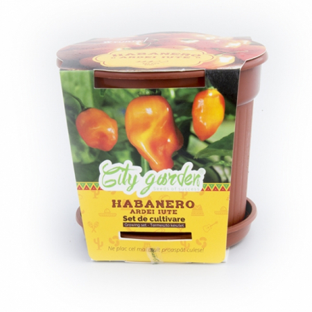 Set de cultivare Ardei iute Mexican Habanero Orange1