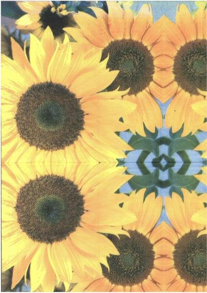 Şerveţel floarea soarelui 1