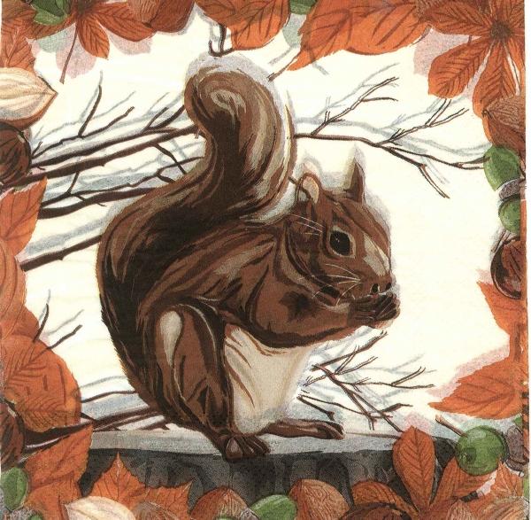 Servetel decorativ veveriță 0