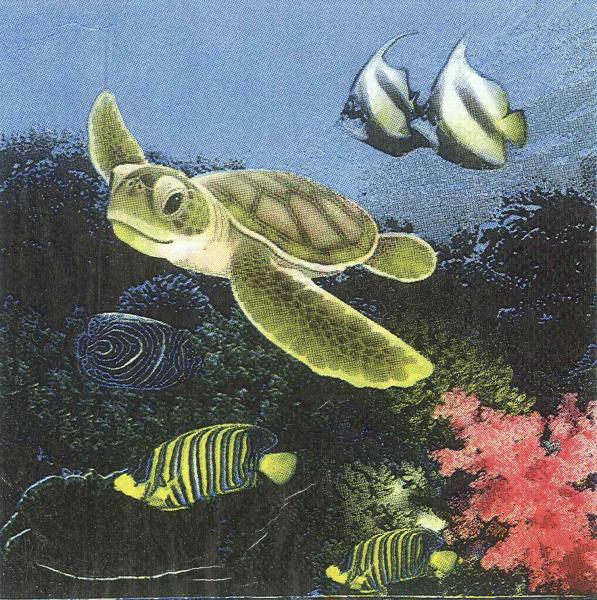 Servetel mediul marin 0