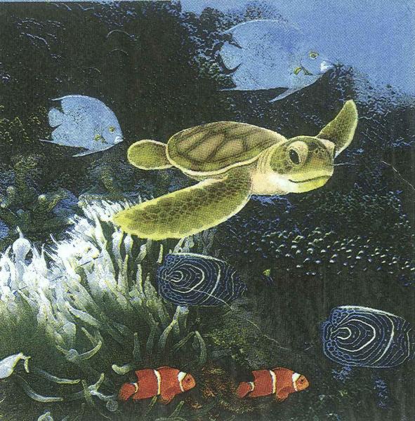 Servetel mediul marin 1
