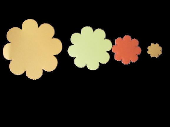 90 flori carton [1]
