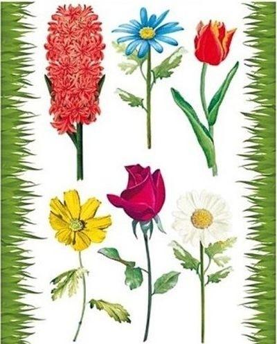 Autocolant static pentru fereastră flori colorate 0