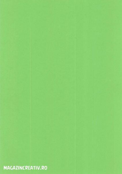 Carton color - 20 coli A4 2
