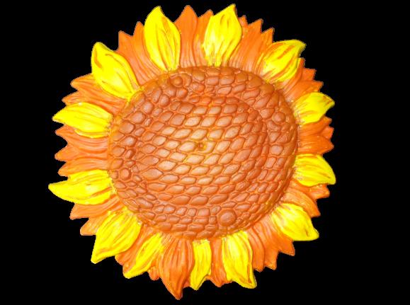 Floarea soarelui 2